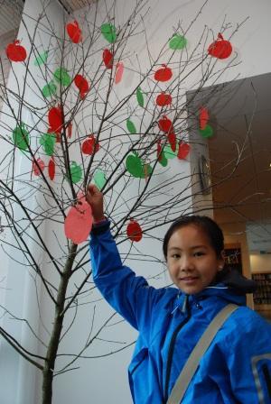 Jenny Leung (12) henger sitt tredje eple på lesetreet